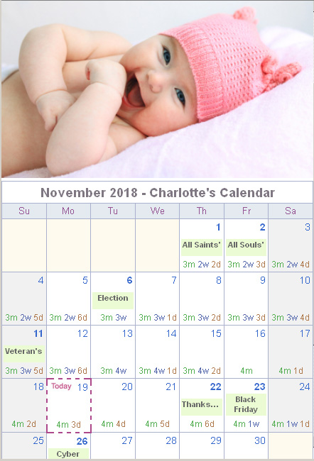 Calendar Generator - Monthly Photo Calendar with Age Chart for Baby